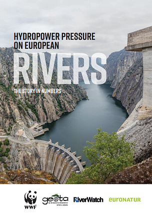 Hydropower pressure on European rivers: The story in numbers