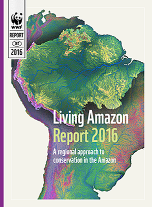 The report outlines the current status of the Amazon, summarizes key pressures and agents of change and presents a few priorities for conservation action in the Amazon biome for the next decade.