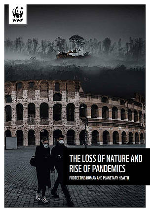 The loss of nature and rise of pandemics cover