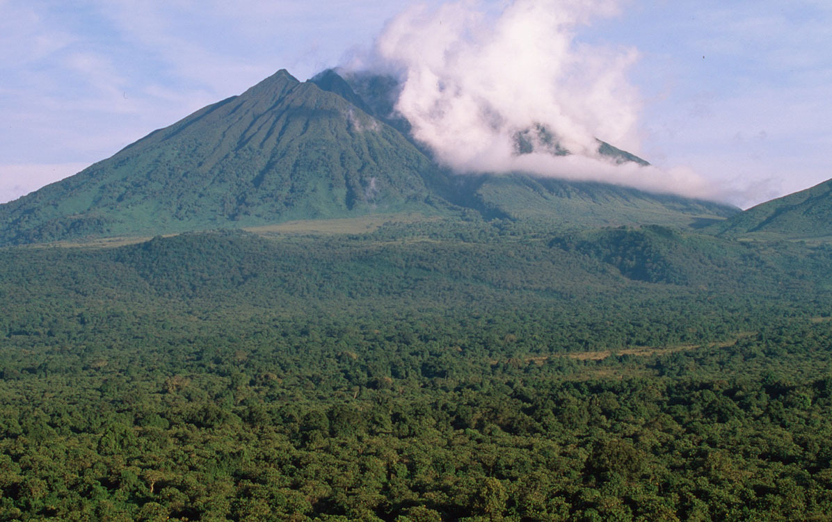 Sabinyo volcano and thick forest, habitat of the endangered mountain gorilla Virunga National Park, Democratic Republic of Congo.