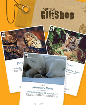 Virtual Gifts  © WWF